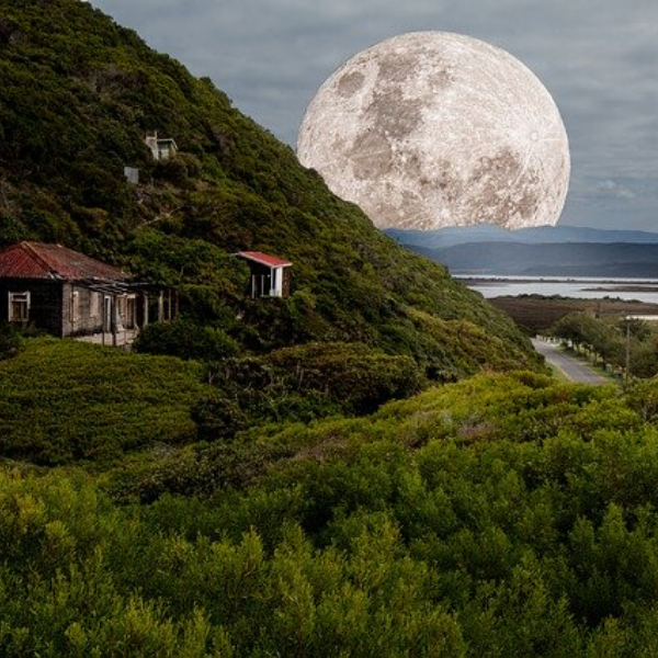 Accepter sa nature cyclique avec la lune